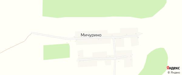 Мичуринская улица на карте деревни Мичурино с номерами домов
