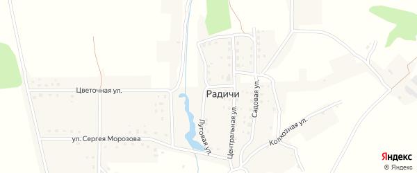 Луговая улица на карте деревни Радичей с номерами домов