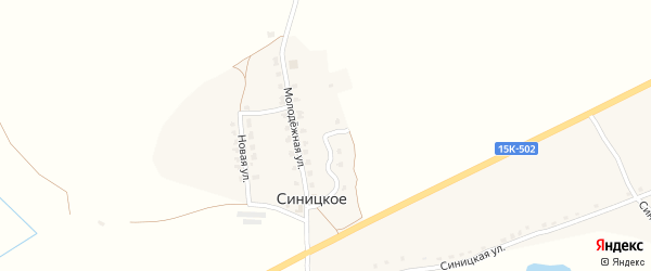 Молодежная улица на карте деревни Синицкого с номерами домов