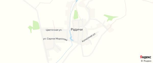 Карта деревни Радичей в Брянской области с улицами и номерами домов