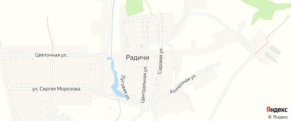 Центральная улица на карте деревни Радичей с номерами домов