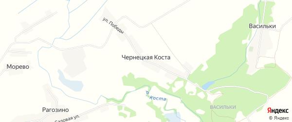 Карта села Чернецкой Косты в Брянской области с улицами и номерами домов