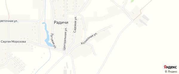 Колхозная улица на карте деревни Радичей с номерами домов