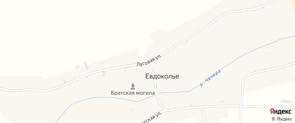 Луговая улица на карте села Евдокольего с номерами домов
