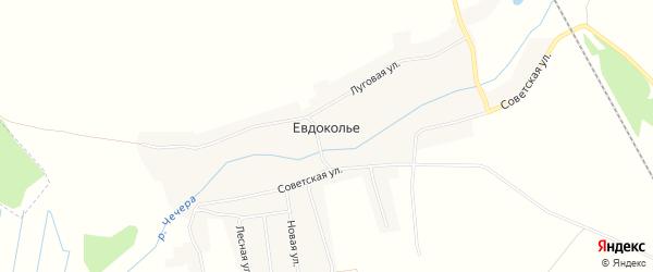 Карта села Евдокольего в Брянской области с улицами и номерами домов