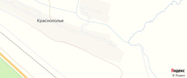Полевая улица на карте деревни Краснополья с номерами домов