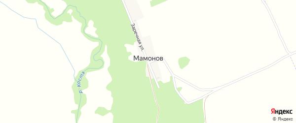 Заречная улица на карте поселка Мамонова с номерами домов