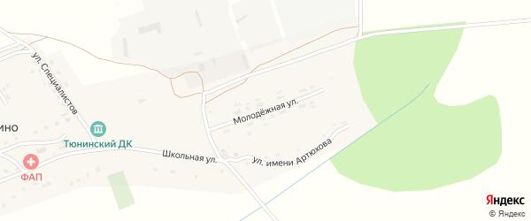 Молодежная улица на карте села Тюнино с номерами домов