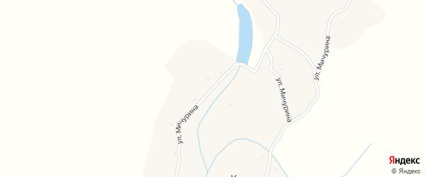 Улица Мичурина на карте села Клинка с номерами домов