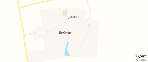 Улица Мира на карте деревни Бибики с номерами домов