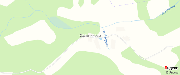 Карта деревни Сальниково в Брянской области с улицами и номерами домов