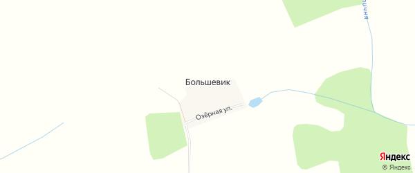 Карта поселка Большевика в Брянской области с улицами и номерами домов