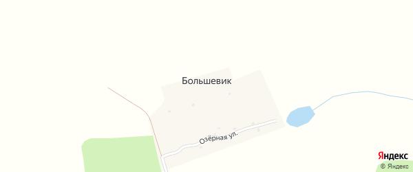 Садовая улица на карте поселка Большевика с номерами домов
