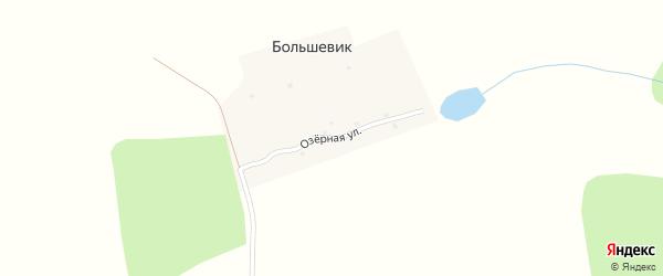 Озерная улица на карте поселка Большевика с номерами домов