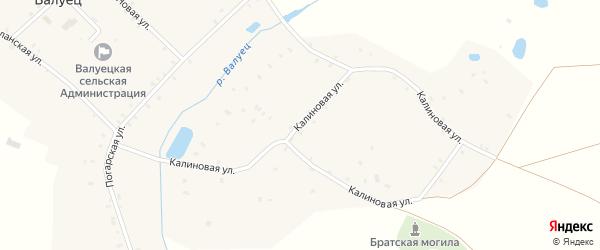 Калиновая улица на карте села Валуйца с номерами домов