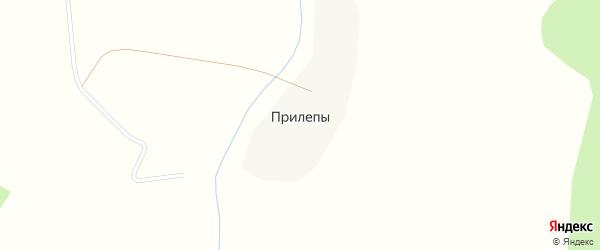 Центральная улица на карте деревни Прилепы с номерами домов
