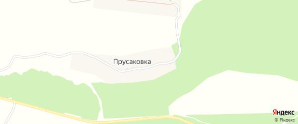 Сосновая улица на карте деревни Прусаковки с номерами домов
