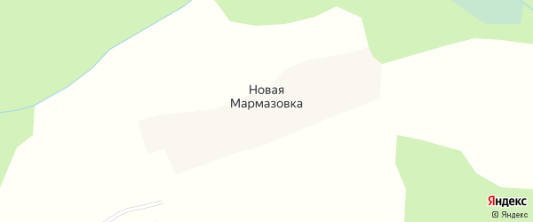 Заречная улица на карте деревни Новой Мармазовки с номерами домов