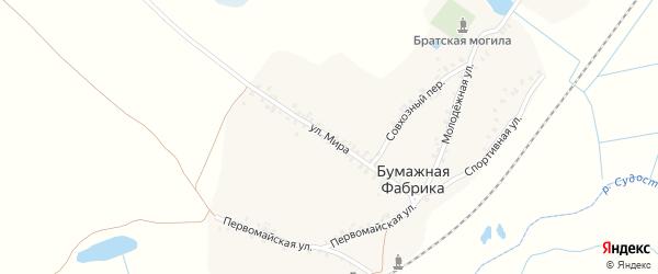 Улица Мира на карте деревни Бумажной Фабрики с номерами домов