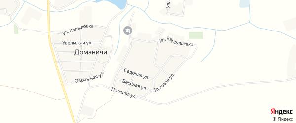 Карта села Доманичей в Брянской области с улицами и номерами домов