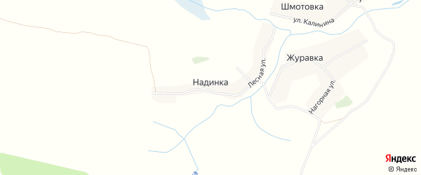 Карта деревни Надинки в Брянской области с улицами и номерами домов