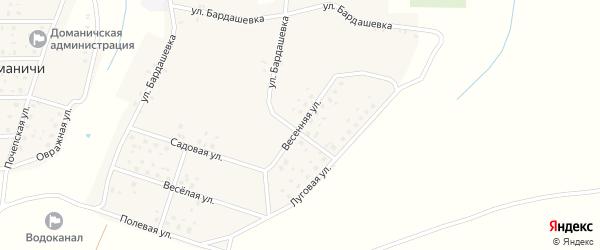 Весенняя улица на карте села Доманичей с номерами домов