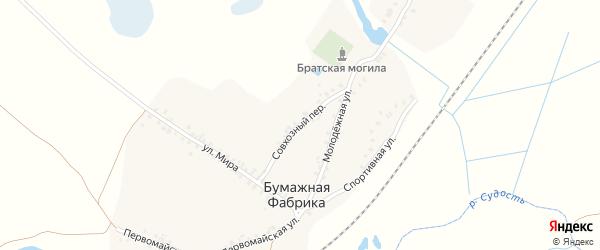 Совхозный переулок на карте деревни Бумажной Фабрики с номерами домов