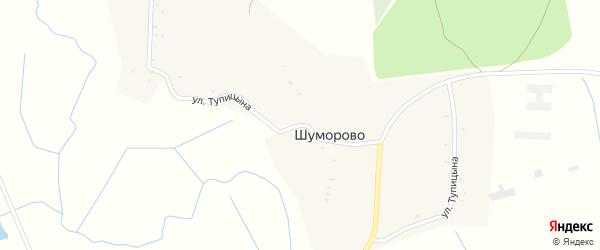 Улица Тупицына на карте села Шуморово с номерами домов