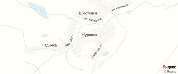 Карта деревни Журавки в Брянской области с улицами и номерами домов