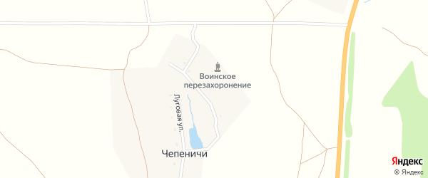 Луговая улица на карте деревни Чепеничей с номерами домов
