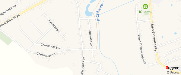 Заречная улица на карте Почепа с номерами домов