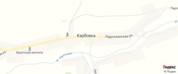 Партизанская улица на карте деревни Карбовки с номерами домов