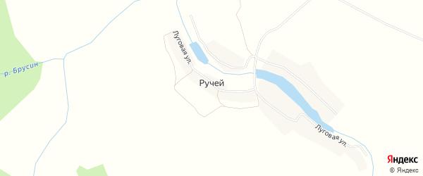 Карта деревни Ручья в Брянской области с улицами и номерами домов