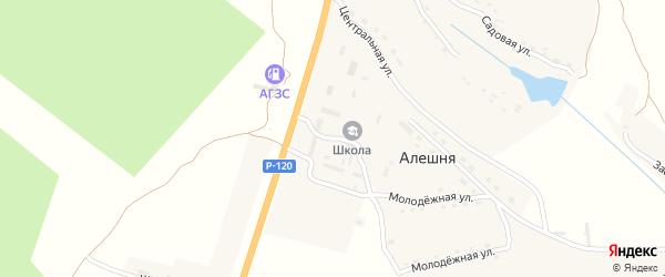 Административная улица на карте села Алешни с номерами домов