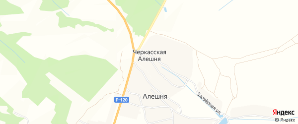 Карта деревни Черкасской Алешни в Брянской области с улицами и номерами домов