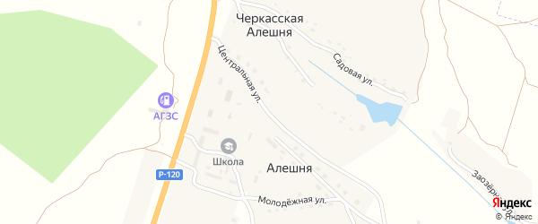 Центральная улица на карте села Алешни с номерами домов