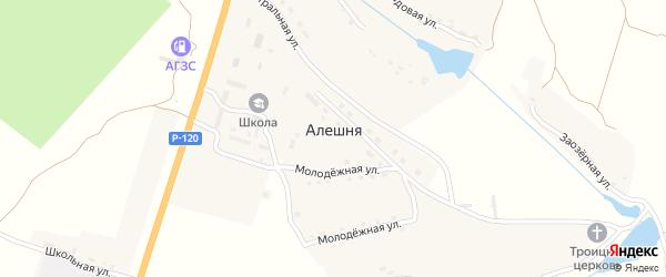 Лесная улица на карте деревни Алешни с номерами домов