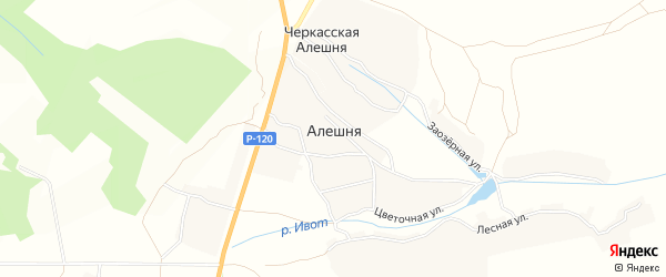 Карта деревни Алешни в Брянской области с улицами и номерами домов