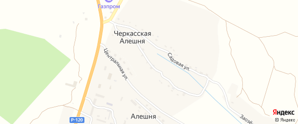 Набережная улица на карте деревни Черкасской Алешни с номерами домов