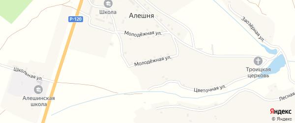 Молодежная улица на карте села Алешни с номерами домов