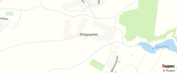 Карта деревни Игрушино в Брянской области с улицами и номерами домов