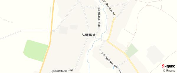 Карта села Семцев в Брянской области с улицами и номерами домов