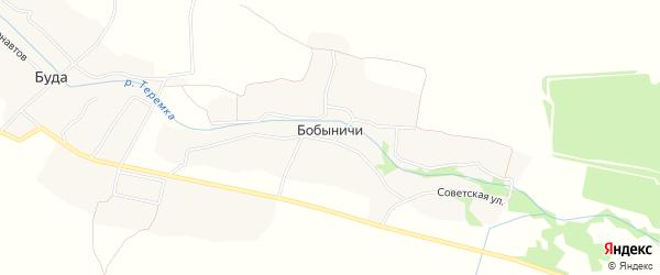 Карта деревни Бобыничей в Брянской области с улицами и номерами домов