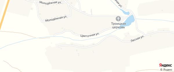 Цветочная улица на карте села Алешни с номерами домов
