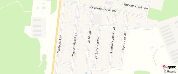 Улица Мира на карте поселка Речицы с номерами домов