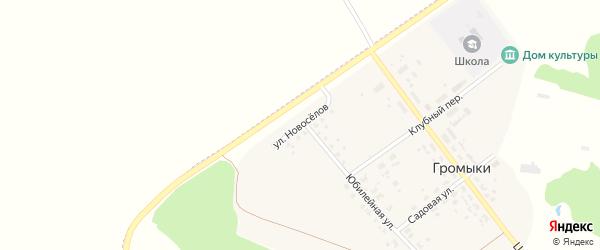 Улица Новоселов на карте поселка Громыки с номерами домов