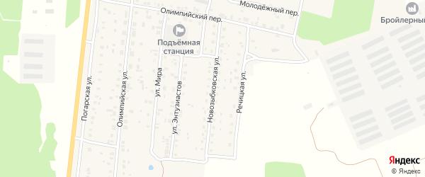 Новозыбковская улица на карте поселка Речицы с номерами домов