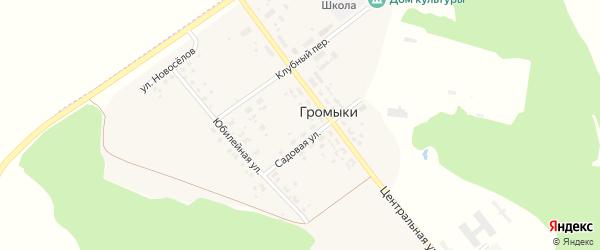Лесной переулок на карте поселка Громыки с номерами домов