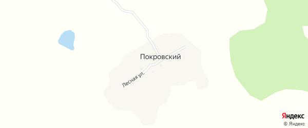 Лесная улица на карте Покровского поселка с номерами домов
