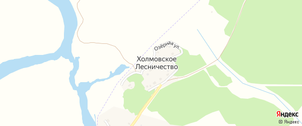 Озерная улица на карте поселка Белой Березки с номерами домов